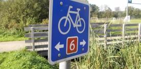 Den Nationale Cykelkonference 2013