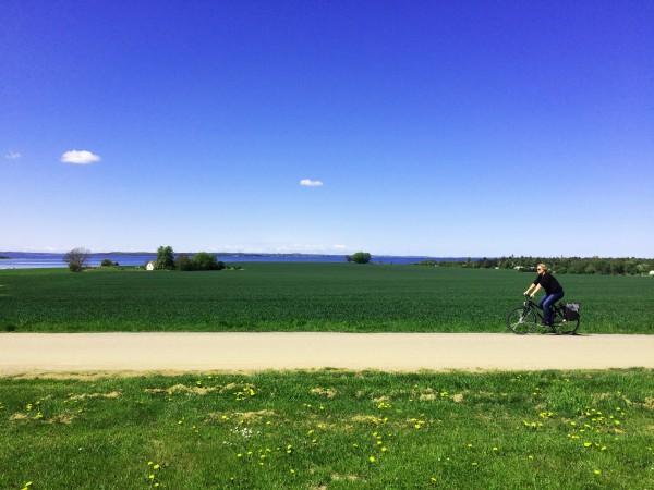 Cyklist ved eng_Foto Marie Lykkebo Dreier